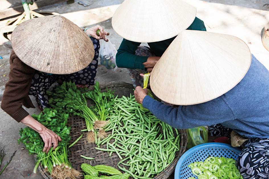 77- vietnam_31