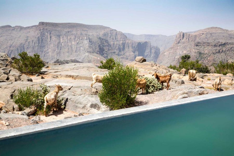 aaja_cliff_pool_villa_view_ext_03_g_a_h